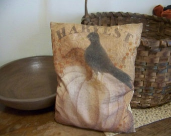 Primitive Harvest Pumpkin Crow Pillow Fall Decor
