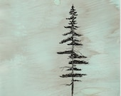 "Ink Drawing, ""Coastal Redwood"", matted, backed, ready for framing"