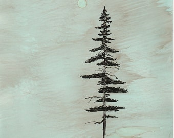 "Ink Drawing, ""Coastal Redwood"", print, matted, backed, ready for framing"