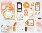 SALE! Gift Wrap Kit, Pink Gold Peach, Paper and Embellishment Kit, Gift Wrap, Feathers
