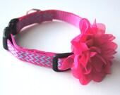 Hot Pink Chiffon Flower Dog Collar Attachment