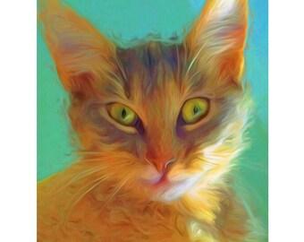 Orange Tabby Cat in the Morning Pet Portrait Glicee Print 8x10 16x20 Korpita