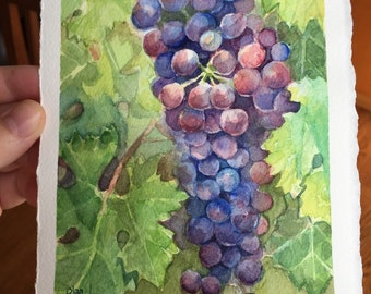 Grapes Watercolor Painting, Original, Vineyard Art, Fruit, Food Art, Wine Lovers Gift 5.5x7.5