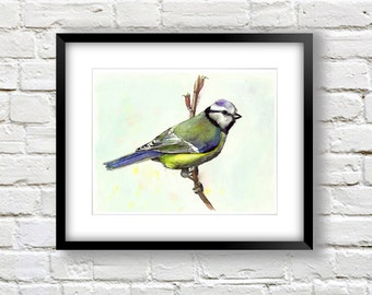 Colorful Bird Art - Bird Wall Decor Blue - Watercolor Bird 8x10 Bird Print - Eurasian Blue Tit -