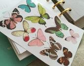 Planner stickers - Big butterflies, multi color