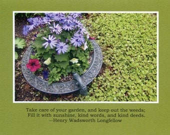 "Henry Wadsworth Longfellow quote ""Take care of your garden"" - photo card"