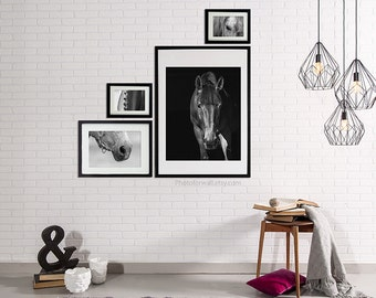 Horse Decor, black and white photography, large wall art/horse photography, Bathroom Art Rustic Bathroom Decor//gallery Wall Decor/