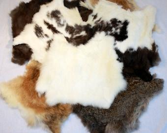QTY 5 Assorted Natural Color Rabbit Pelts