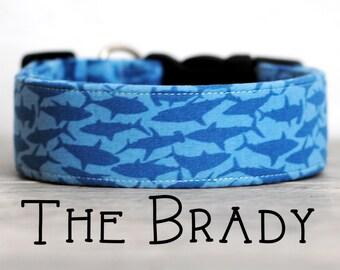 "Playful Light Navy & Blue Shark Dog Collar ""The Brady"""