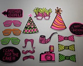17 Pc. Girl Birthday Photo Booth Props
