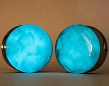 Glow in the Dark Fish Rock Plugs, gauges  00g, 7/16, 1/2, 9/16, 5/8, 3/4, 7/8, 1 inch