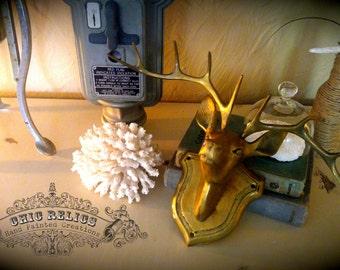 RARE Vintage brass deer head wall mounted decor