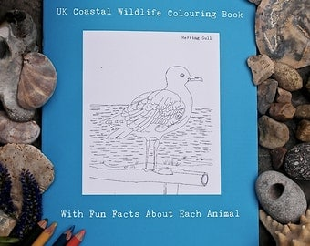 UK Coastal Wildlife, Hand Illustrated Colouring Book (With Fun Facts about Each Animal), animal colouring book, coastal wildlife colouring