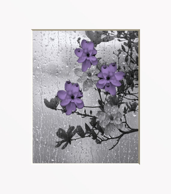purple gray wall art photography decorative by. Black Bedroom Furniture Sets. Home Design Ideas