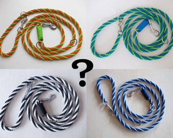 dog leash, hand-plaited, in your desired colors