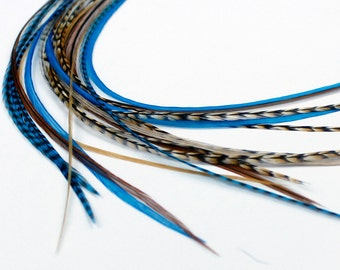 Real Feather Hair Extensions : Blue Auburn