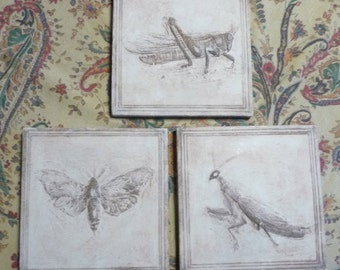 Three Insect Tiles 3-Dimensional