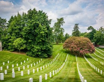 Rows of graves at the Arlington National Cemetery, in Arlington, Virginia. | Photo Print, Stretched Canvas, or Metal Print.