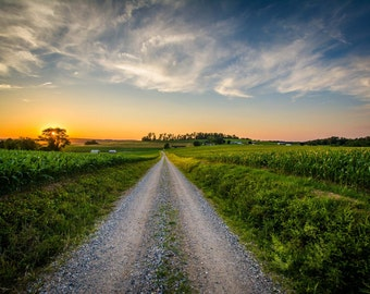 Farm fields along a dirt road at sunset, near Jefferson in rural York County, Pennsylvania. | Photo Print, Stretched Canvas, or Metal Print.