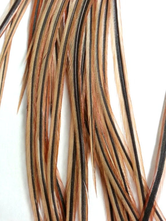 Basket Weaving Supplies Singapore : Long rooster feathers natural brown feather