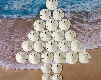 Small Sand Dollars (25 pcs) -  Beach Wedding Decor - Craft Shells - Nautical Decor - Natural White Florida Sand Dollars