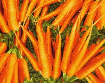 RJR Fabrics Farmers Market 0449 01 Carrots by the Yard