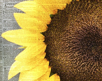 Sunflower Vintage II