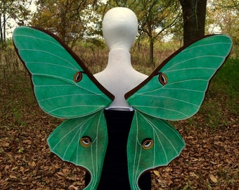 Luna Moth Wings