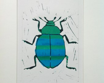 Green and turquoise beetle.