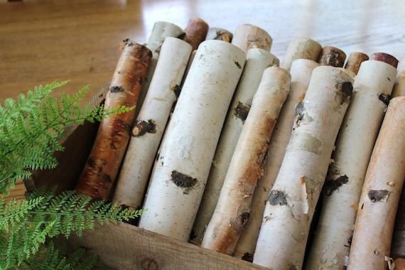 10 39 39 birch logs decorative birch logs box full of for White birch log crafts