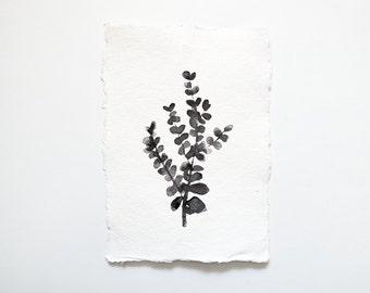Botanical: Original Watercolour Painting