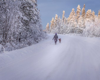 Woman and dog walking on a snow covered road