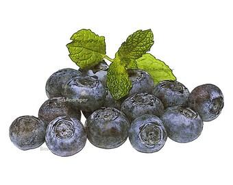 5x7 food art print, blueberries fruit illustration, retro digital image, food art, kitchen art, vintage inspired, download, printable art