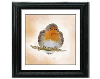 Robin Fine Art Print, Bird Painting, 8x8 inch Watercolour print,  Wall Art, Home Decor