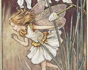 The Narcissus Fairy - Counted cross stitch pattern in PDF format