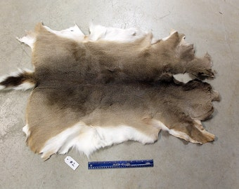 Soft Tanned Whitetail Deer Hide #2