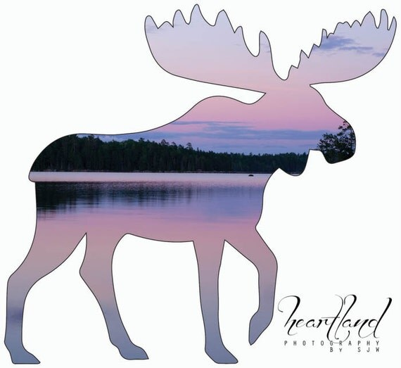 Moose Cut Out, Acrylic Wall Art, Boundary Waters, Pink and Purple, Pastel Colors, Unique Photo Prints, Nature Photography, Wild Animals