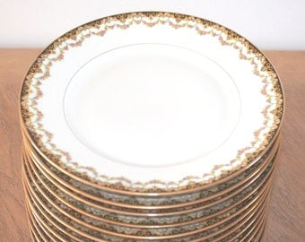 Dinnerware Set, Limoges Plates, Dinner Plates, Limoges China, Limoges France, Antique Porcelain Plates, Dinner Plate Set, Made in France