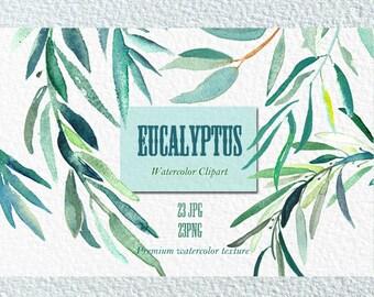 Eucalyptus  branches watercolor clipart hand drawn. Romantic wedding, mint green, tender green branches, wedding invitation.