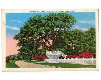 Biloxi Mississippi vintage postcard   Mississippi Gulf Coast vacation postcard   East Beach   1930s MS travel postcard   southern decor