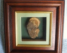 A Talking Point On Your Wall A Unique Box Framed Display Of Ammonite Fossils in Rock