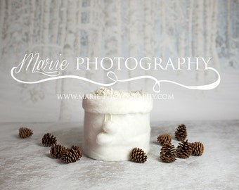 INSTANT DOWNLOAD-Christmas backdrop! Christmas fur bucket, snow backdrop! newborn christmas digital backdrop