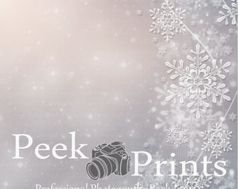 5ft.x5ft. Lacey Snowflake Vinyl Photography Backdrop- Christmas Ice Background