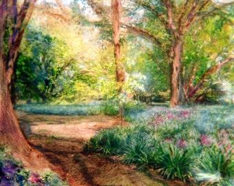 Prospect Park Landscape 2