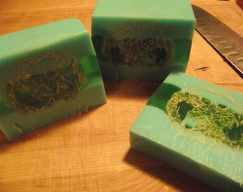 Goat Milk Soap with Loofah  All Natural Two bars Pick your scent