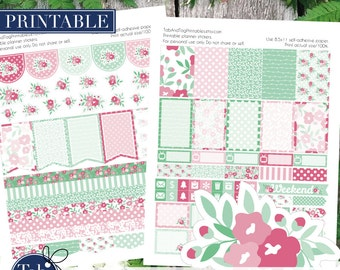 Printable planner stickers for MAMBI Happy Planner in mint and raspberry pink. Two pack shabby chic kit with floral patterns.