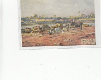 "Fine Old Postcard ""Indian Tea"" Dispatching By River-Elephant Helper-Boats Waiting, Unused"