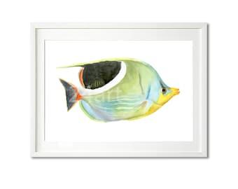 animal art, watercolor fish painting print, original watercolor print, fish  art, fish print, buy two get one free