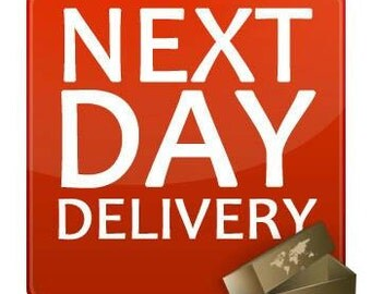 UK Next Day Delivery (excl. Saturday deliveries)