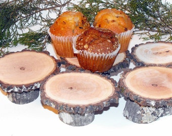 5 Rustic Mini Cupcake Stands ~ Wood slice large tops ~ Rustic Weddings ~ Woodland Baby showers ~ table decor  ~ Doll house decorations